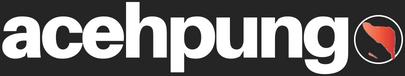 acehpungo.com